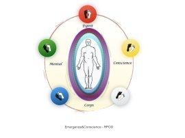 La réflexologie plantaire consciente