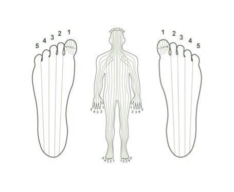 LECTURE PSYCHO-EMOTIONNELLE DES PIEDS : Vos pieds vous parlent.