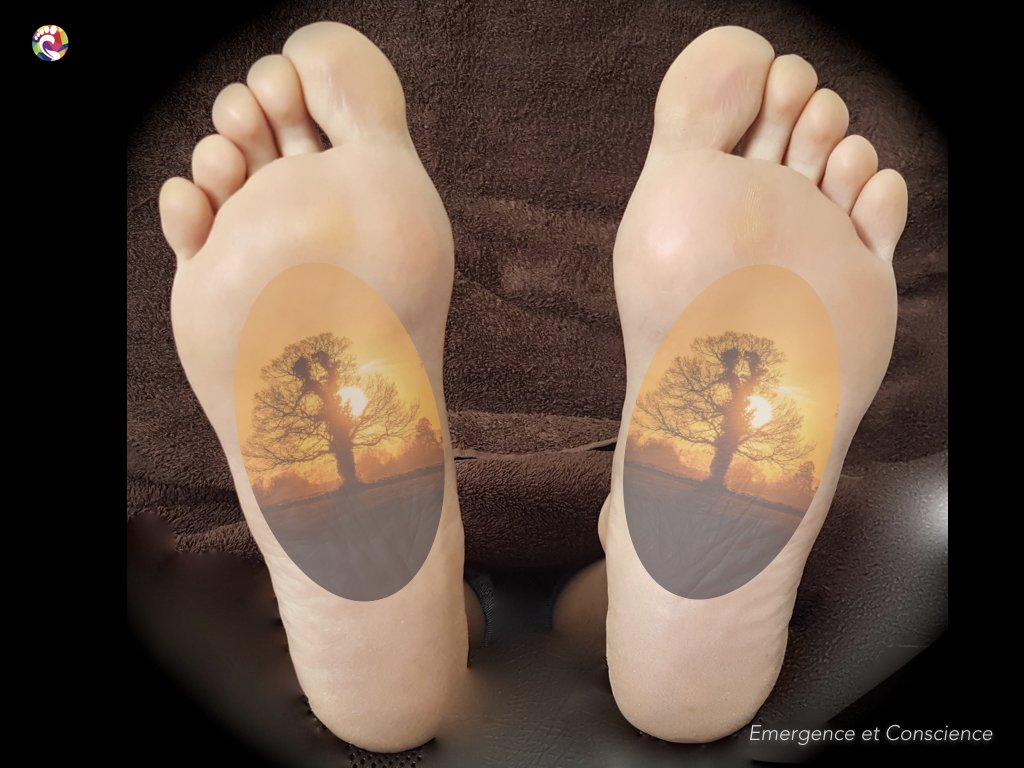 lecture pyscho émotionnelle des pieds