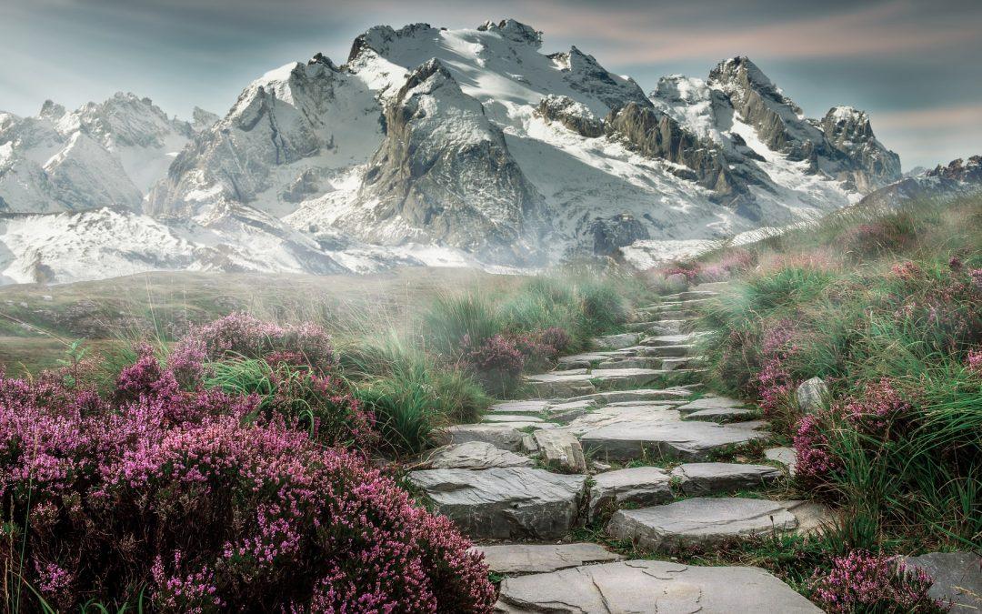 Bonheur et spiritualité le même chemin ?